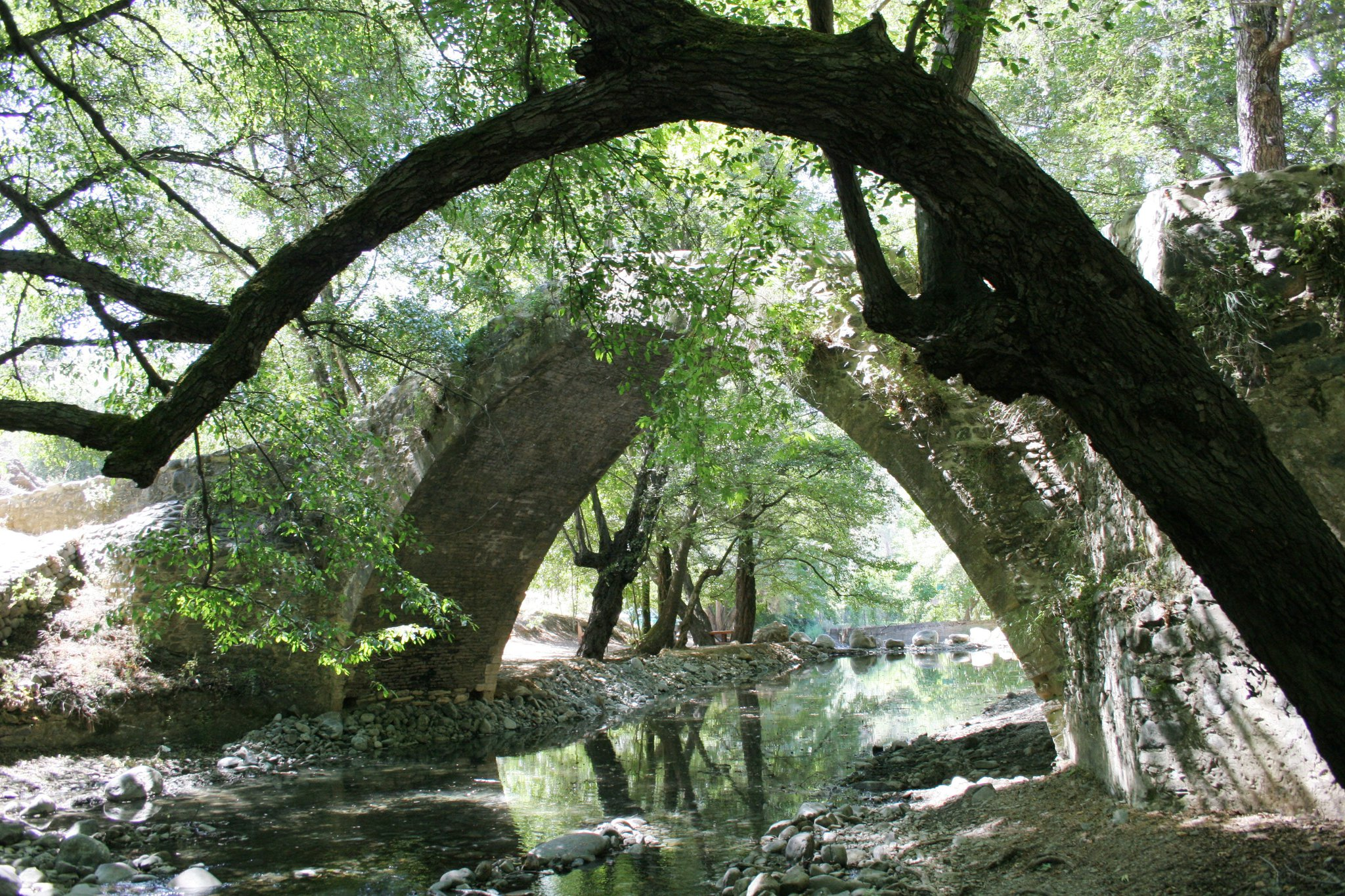 Tzelefos Bridge (Paphos, river, forest).JPG